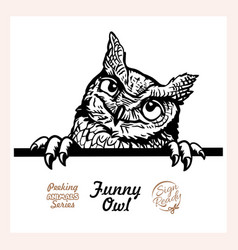 peeking funny owl - funny owl out - face vector image