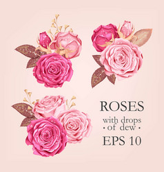 Set of pink rose vector