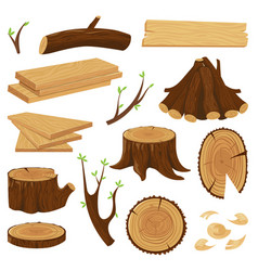 timber wood trunk stacked firewood logging tree vector image