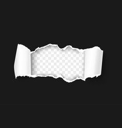 Torn paper with rolled edge on transparent vector