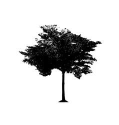 tree 04 vector image