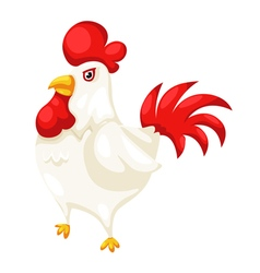 chicken isolated on white background vector image