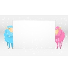 Banner with sheeps vector image