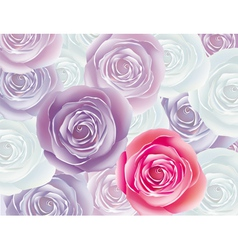 background from rose vector image