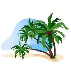 Beach palms vector