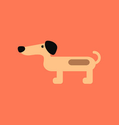 Flat icon on background pet dog dachshund vector