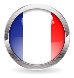 Gloss Button with French Flag vector