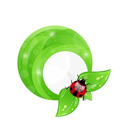 Green round frame with leaf elements and ladybug vector image
