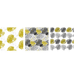 set patterns in monochrome shades with nonstera vector image