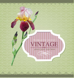 Vintage border iris vector