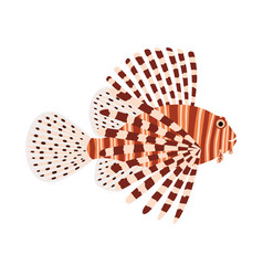 a lionfish tropical exotic fish vector image