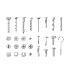 Metal fastener stainless steel bolt and screw set vector