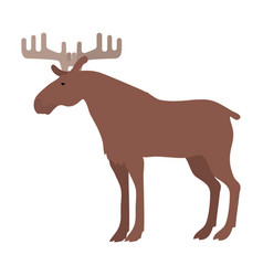 moose in flat design vector image