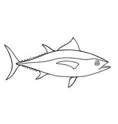 tuna fish sketch vector image