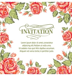 Frame of red roses on a white background vector image vector image