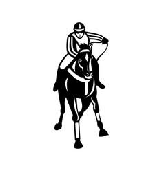 Jockey racing thoroughbred horse galloper front vector