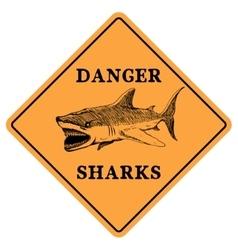 Danger sharks vector image