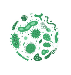 a circle of germs bacteria vector image