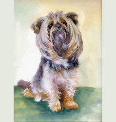 hand drawn cute yorkshire terrier dog vector image vector image