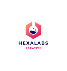 hexagon labs logo icon vector image