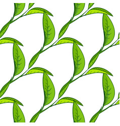 seamless pattern with tea leaves vector image