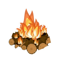 wood burning bright campfire isolated on white vector image vector image