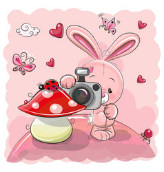cute cartoon rabbit with a camera vector image vector image