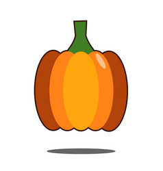pumpkin isolated on white flat design style vector image vector image