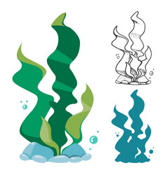 doodle silhouette and cartoon seaweeds set vector image