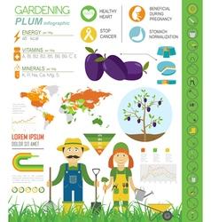 Gardening work farming infographic Plum Graphic vector