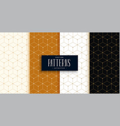 hexagonal luxury pattern set in geometric line vector image