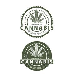 medical organic cannabis vector image vector image