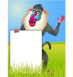Baboon with blank sign vector image vector image