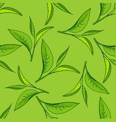 seamless tea leaves pattern vector image