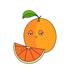 Fruit orange vector