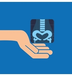 hands and x-ray body icon vector image