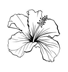 hawaiian hibiscus outline laser cut vector image