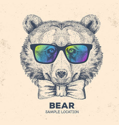 Hipster animal bear hand drawing muzzle of bear vector