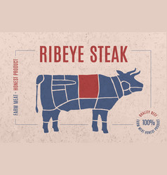 Label for meat with text ribeye steak vector