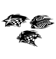 Racing stars with flags vector