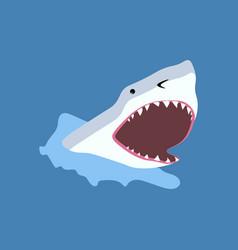 Shark fish vector