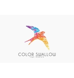 Swallow logo Color swallow logo design Bird logo vector image