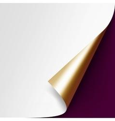 Curled Golden corner paper on Vinous Background vector image