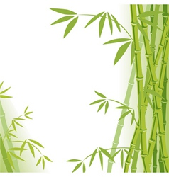 Background bamboo vector