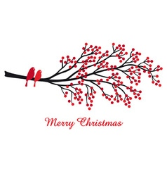 Christmas card with red berries and birds vector