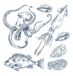 Fish and marine creatures as seafood poster vector