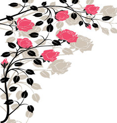 Flourishes-in-black-and-pink vector