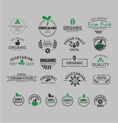 Organic and natural logo vector