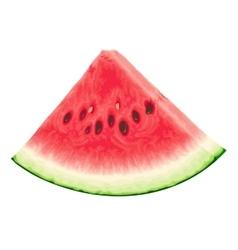 Piece of watermelon vector