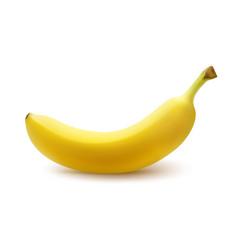 ripe yellow banana vector image